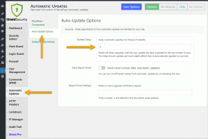 Screenshot: Shield Automatic Updates Delay